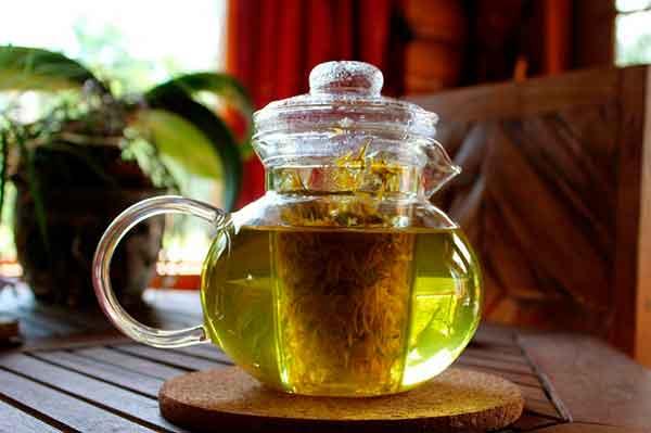 Чай от остеохондроза состав трав