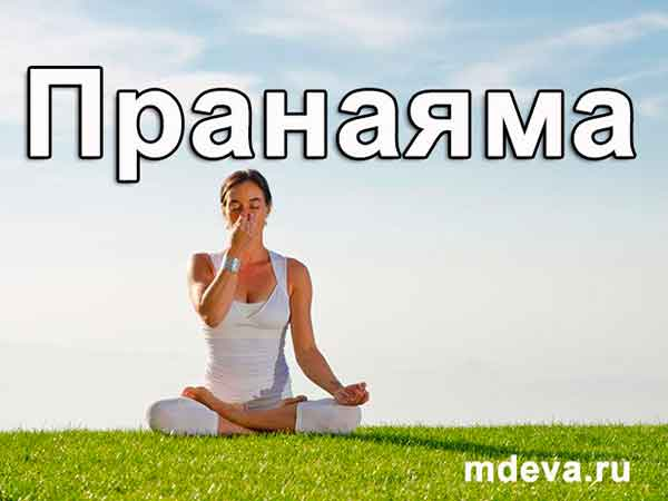Техника дыхания Пранаяма. Видео уроки для начинающих