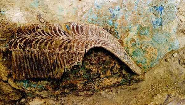 Гребень из слоновой кости – один из артефактов огромной сокровищницы.